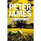 Ett snyggt lik av Peter James